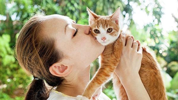 Кошки больше не проблема. Ученые Сеченовского университета создают вакцину от аллергии