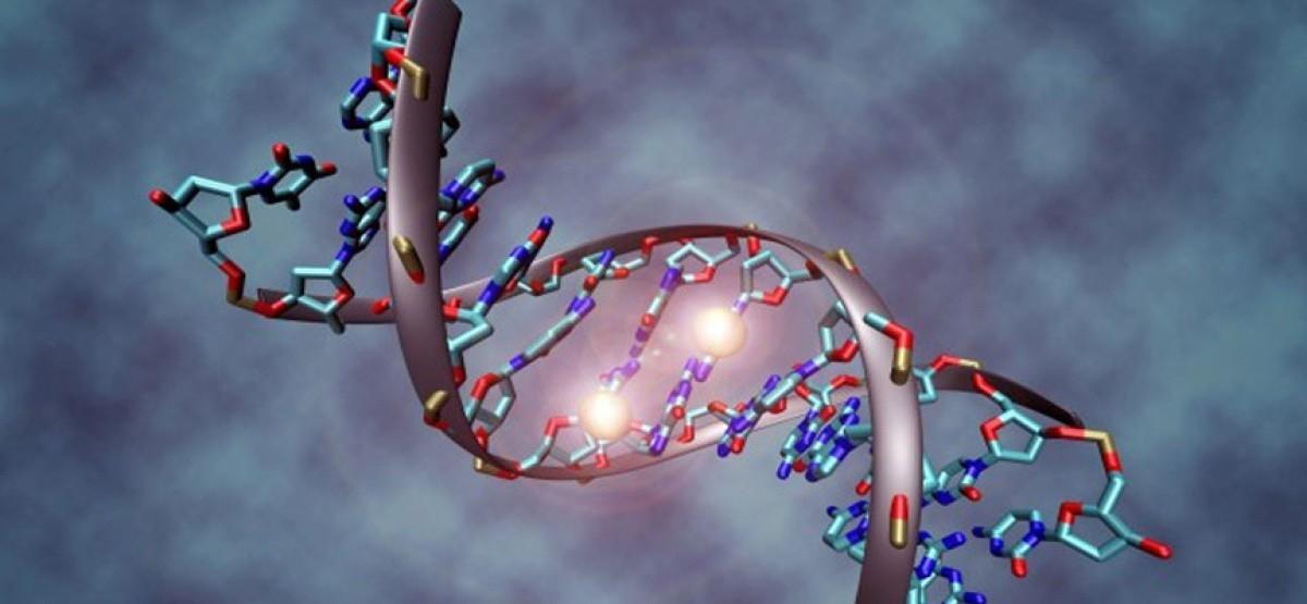 Биоинженеры идут в медицину