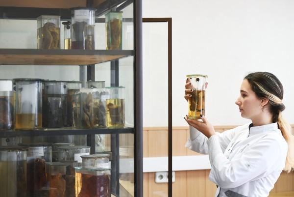 Банковское тело: ученые собрали коллекцию «живых» раковых опухолей