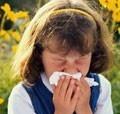 Фуллерены VS аллергия