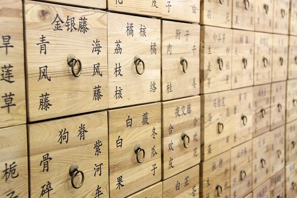 Sechenov University announces dual degree program with Henan University of Traditional Chinese Medicine
