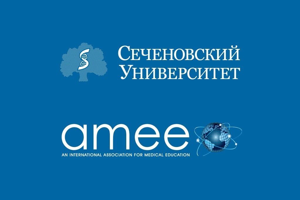 Представительство АМЕЕ в России - платформа для междисциплинарного диалога преподавателей