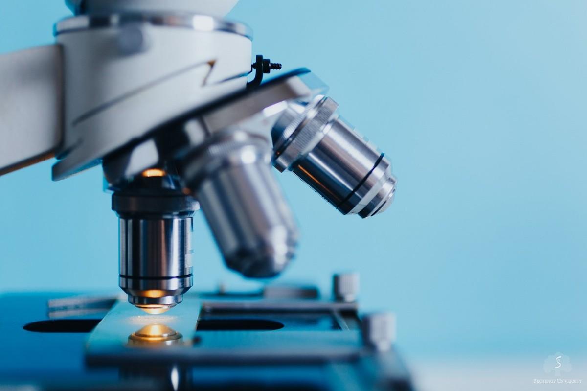 Sechenov scientists study a novel type of extracellular vesicles