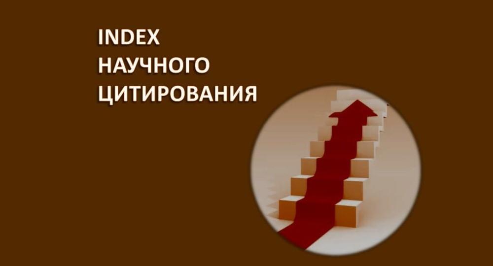 Институты развития Сеченовского университета показывают устойчивый рост публикаций в Scopus