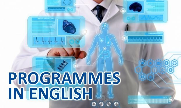 Degree Programmes in English